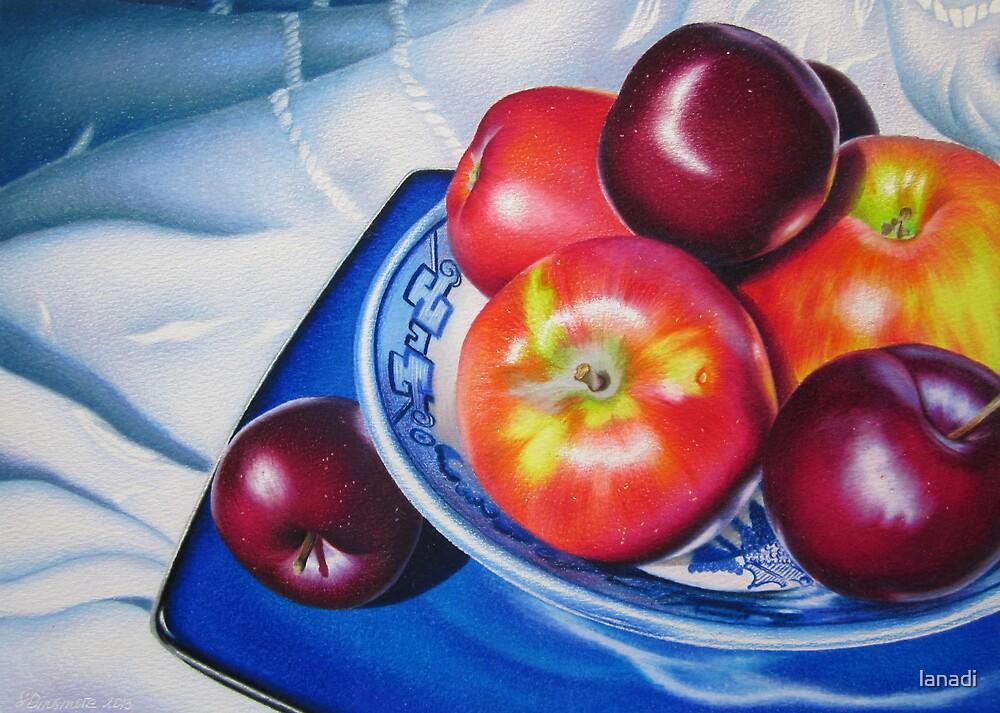Fruit on blue china by lanadi