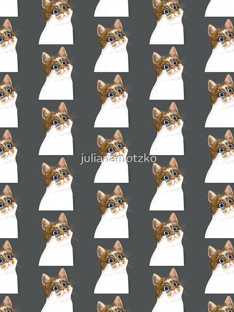 Cat by julianamotzko