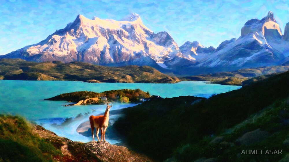 Torres del Paine National Park and the Llama, Chile by MotionAge Media