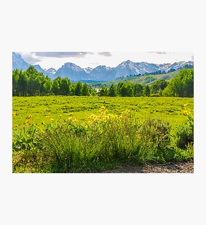 View Of The Grand Tetons Photographic Print