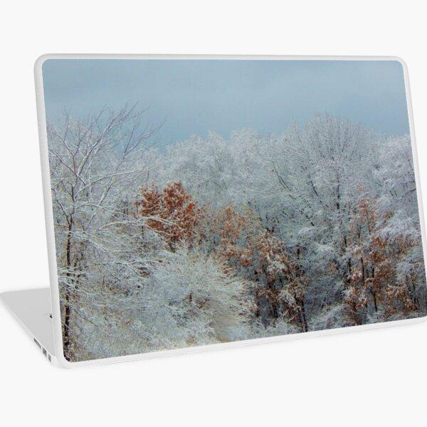 December Winter Solstice Laptop Skin