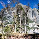Yosemite Reflection by Mike Herdering