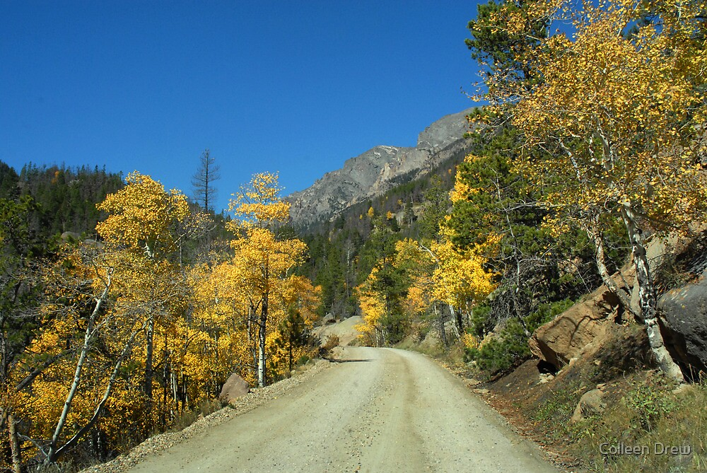 Back Roads to the Top by Colleen Drew