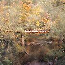 Blackwell Bridge by Brent Craft