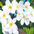 Hawaiian Flowers 2 by Barbara  Strand