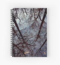 Mirror, Mirror Spiral Notebook