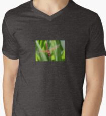 Closeup of Red Skimmer or Firecracker Dragonfly Mens V-Neck T-Shirt