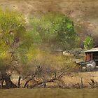 North Verde Ranch by Patito49