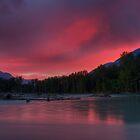 Bella Pink by James Anderson