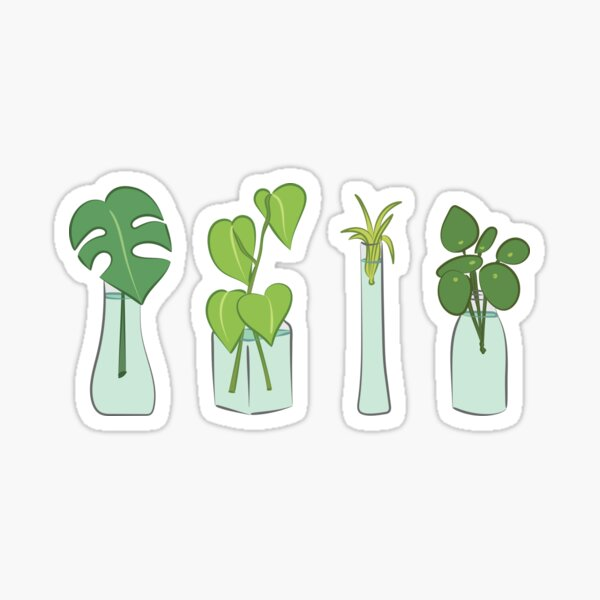 Plants in water bottles, colorful hand drawn illustration art Sticker