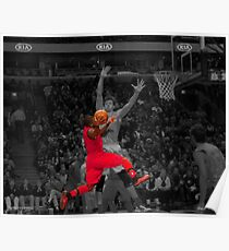 Nate Robinson Poster