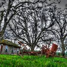 The Old Farm by Charles & Patricia   Harkins ~ Picture Oregon