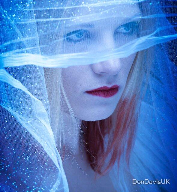Winter Bride by DonDavisUK
