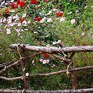 FLOWERS ALONG THE EVEREST TREK by Betsy  Seeton