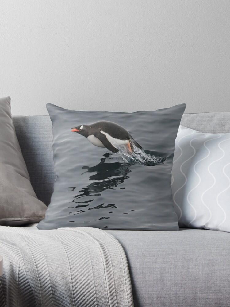 Flying Penguin by Aaron Paul Stanley