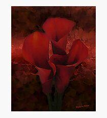 Dark Red Lilies Photographic Print