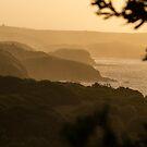 George Bass Coastal Walk by Timo Balk