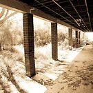Larundel Mental Hospital, Bundoora - 3 by straylight