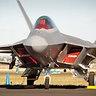 F-22 Raptor by palmerphoto