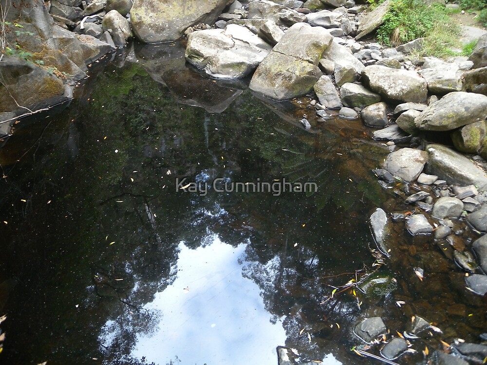 Natures Reflections by Kay Cunningham