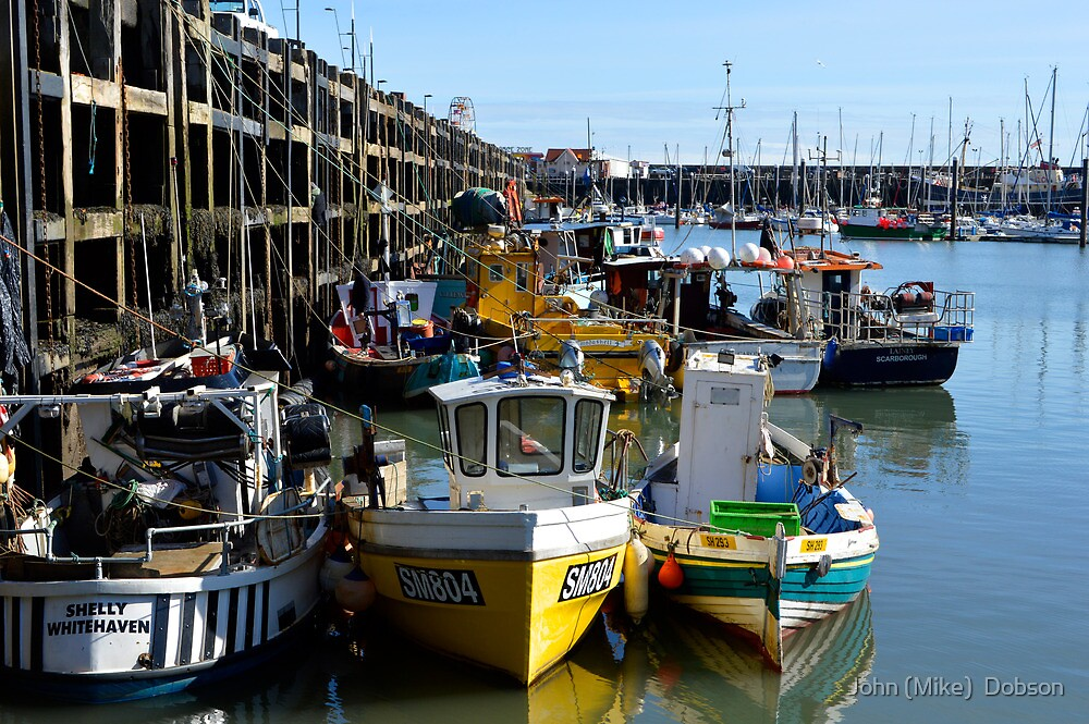 The Harbour by John (Mike)  Dobson