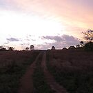 Goodnight Sunset by BekJoy