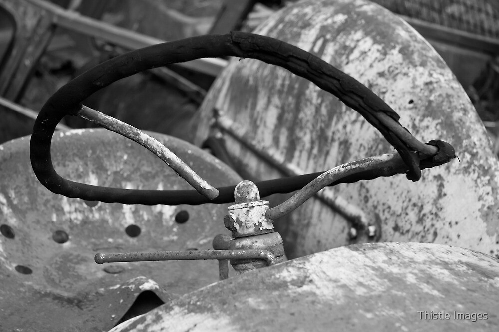 Steering wheel by Thistle Images