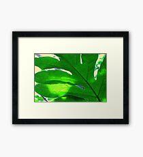 Leaf and sky Framed Print