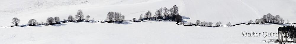 Winter Brook by Walter Quirtmair