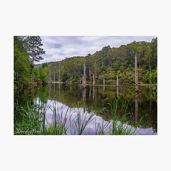 Lake Elizabeth  Photographic Print