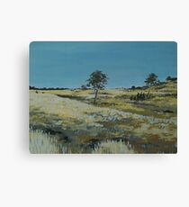 Summer fields of McAlister. No. 2 Canvas Print