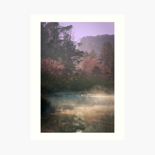 Daylesford Lake - Early Mist Art Print