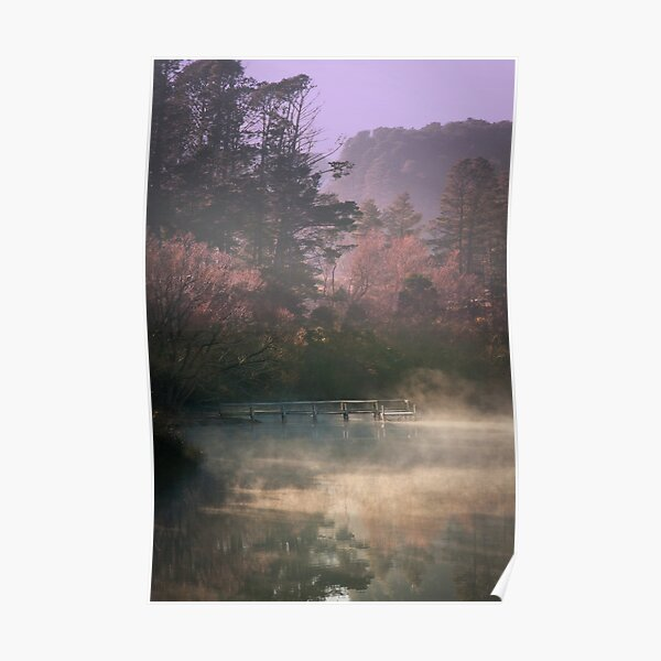 Daylesford Lake - Early Mist Poster