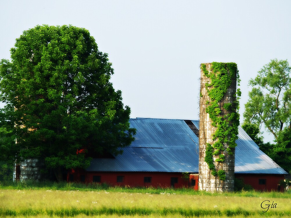 """ A Viney Tower "" by Gail Jones"