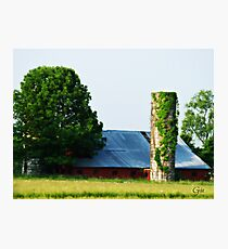 """"""" A Viney Tower """" Photographic Print"""