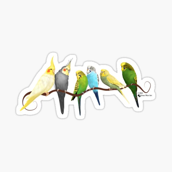 Small parrots Sticker