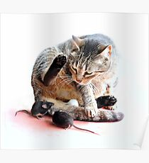 Playing cat and mouse Poster