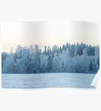Winter Weaves Lace On Trees Poster