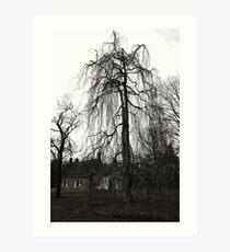 tree at deWint house Art Print