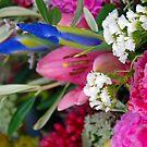 floral II by Glen Johnson