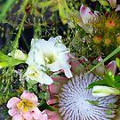 floral III by Glen Johnson