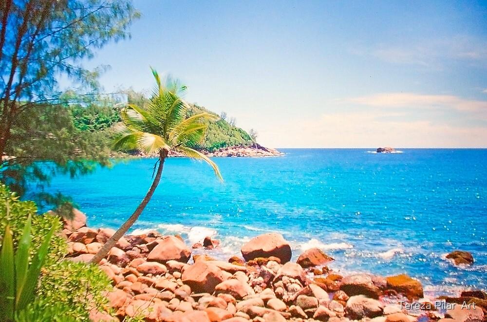 azul turquesa. seychelles. by terezadelpilar ~ art & architecture
