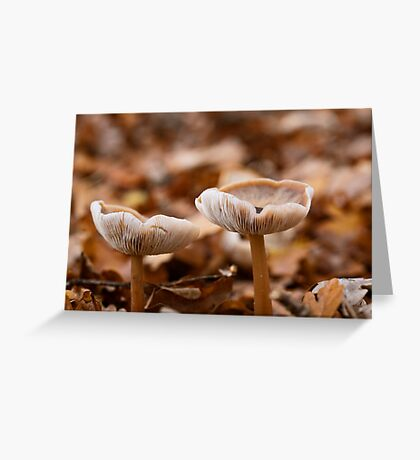 Autumn Collection Cups Greeting Card