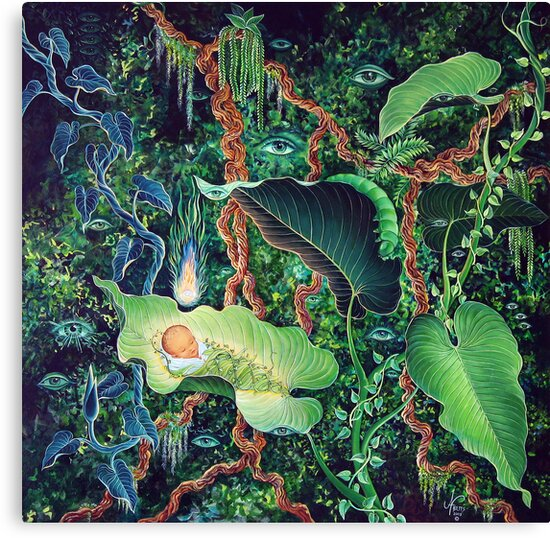 Rebirth in the Jungle by Jan Betts