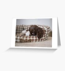 Snug and cosy Greeting Card