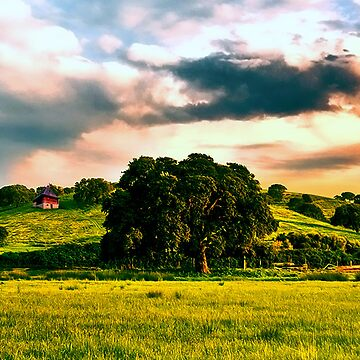 Beautiful World by wilesr