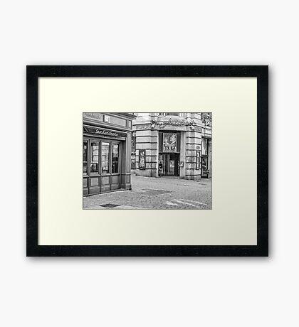 Metz Framed Print