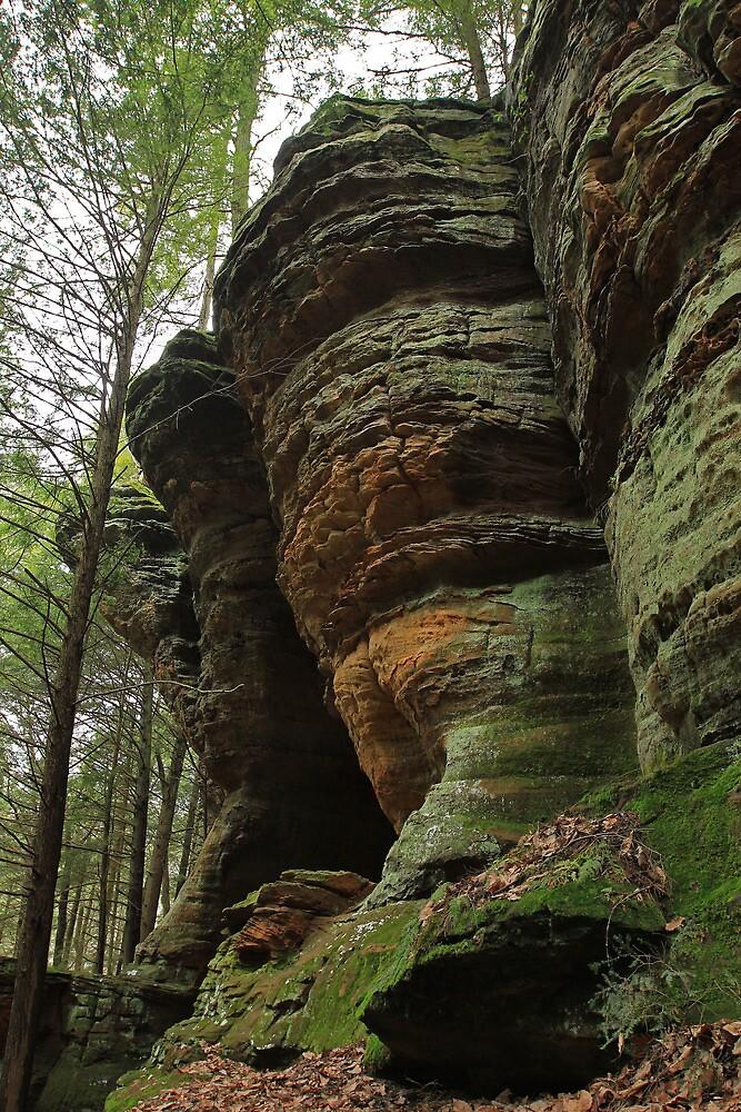 Stone Giants by Lynn Gedeon