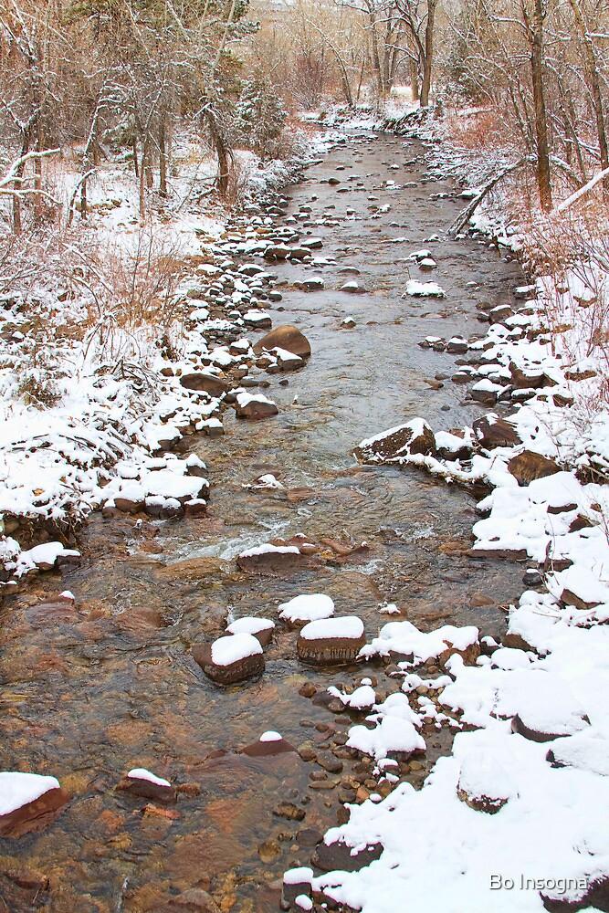 Winter Creek Scenic View by Bo Insogna
