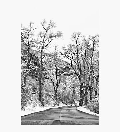 Winter Road Black and White Photographic Print
